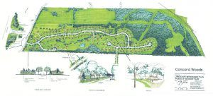 Main Line Landscape Architects