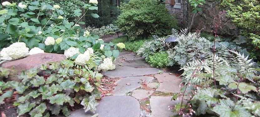 Landscape Architects Wilmington